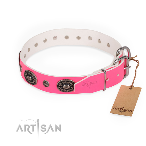 Walking adorned dog collar with rust-proof D-ring