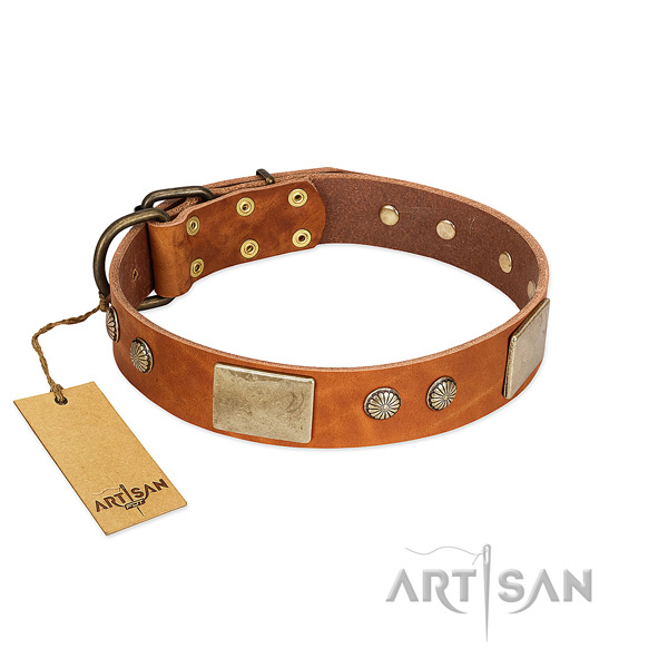 Easy to adjust full grain natural leather dog collar for walking your pet