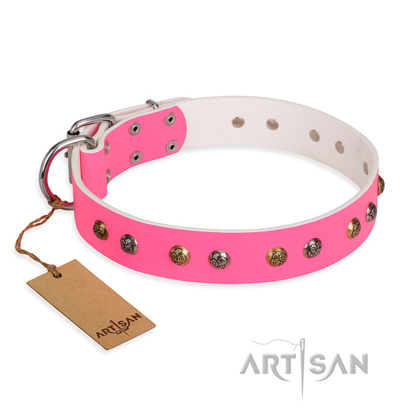 Daily use amazing dog collar with corrosion resistant hardware