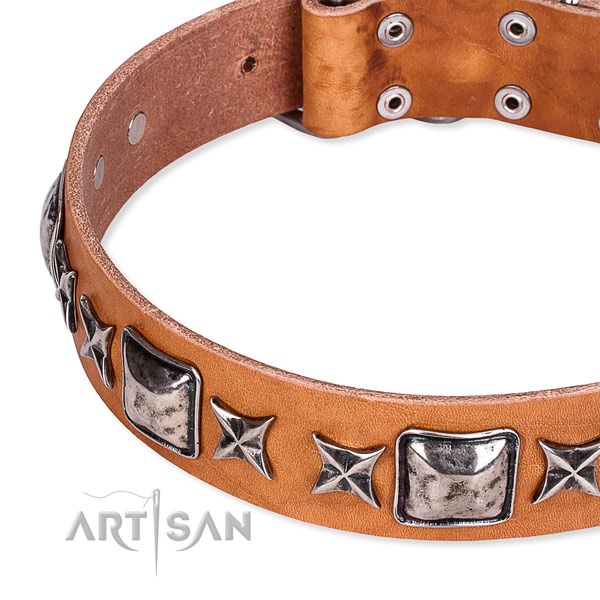 Handy use decorated dog collar of top notch full grain natural leather