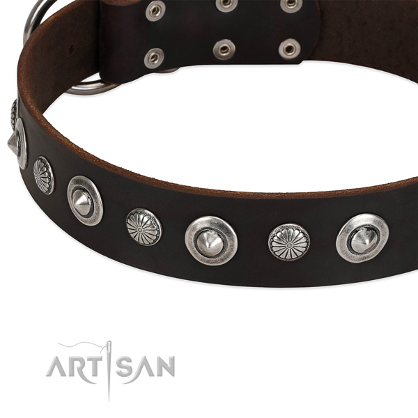Inimitable embellished dog collar of reliable full grain genuine leather