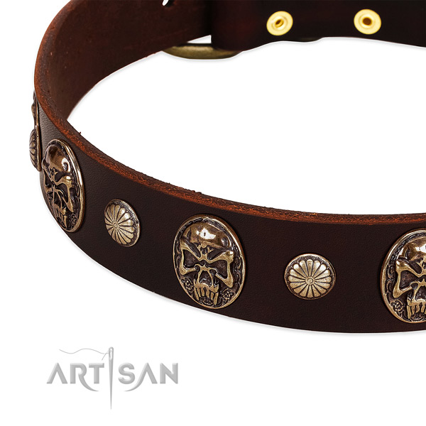 Genuine leather dog collar with studs for daily walking