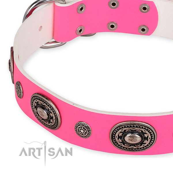 Natural genuine leather dog collar with trendy corrosion resistant studs