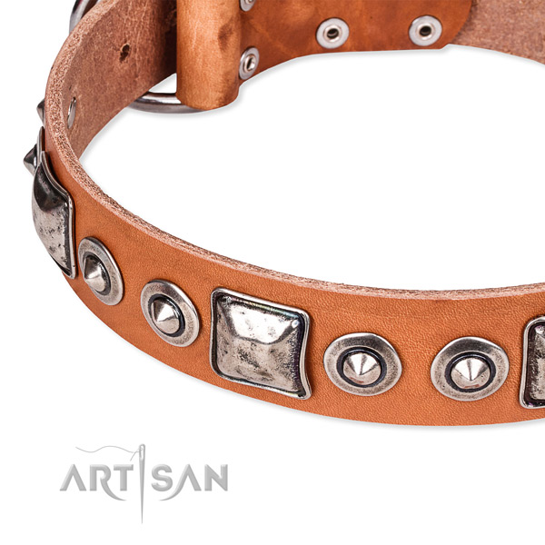 Reliable natural genuine leather dog collar handmade for your beautiful pet