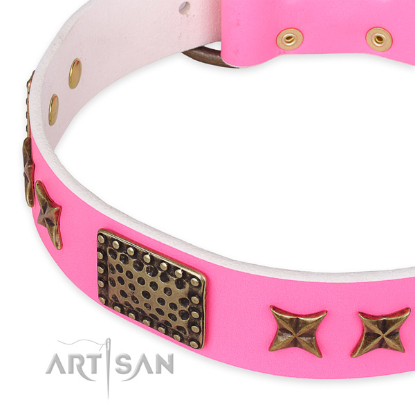 Genuine leather collar with corrosion proof D-ring for your handsome canine