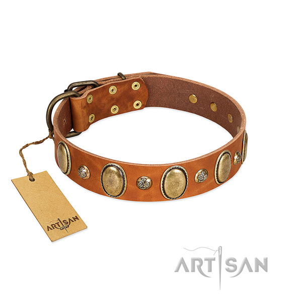 Genuine leather dog collar of quality material with stylish studs