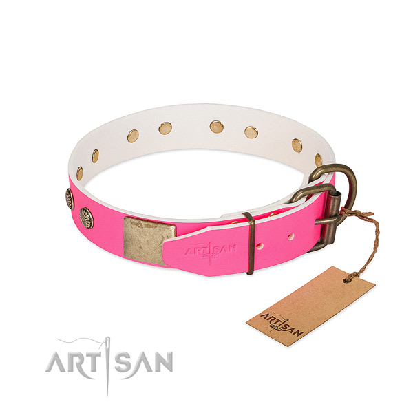 Corrosion proof traditional buckle on stylish walking dog collar