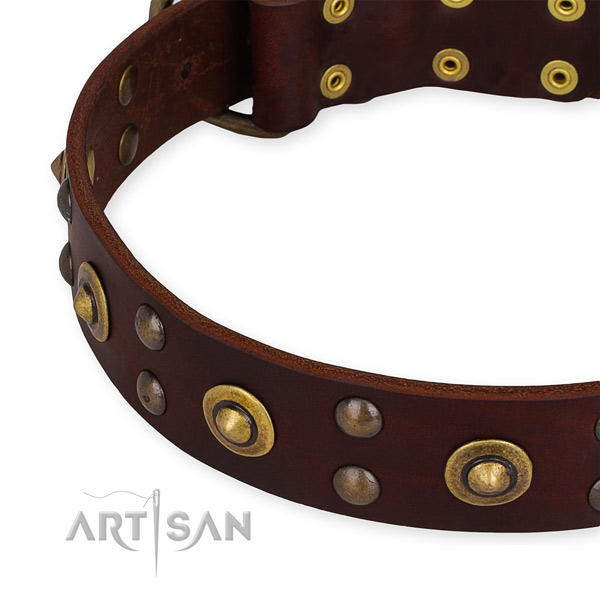 Full grain natural leather collar with reliable buckle for your lovely canine