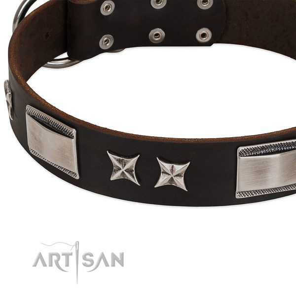 Soft full grain leather dog collar with durable traditional buckle