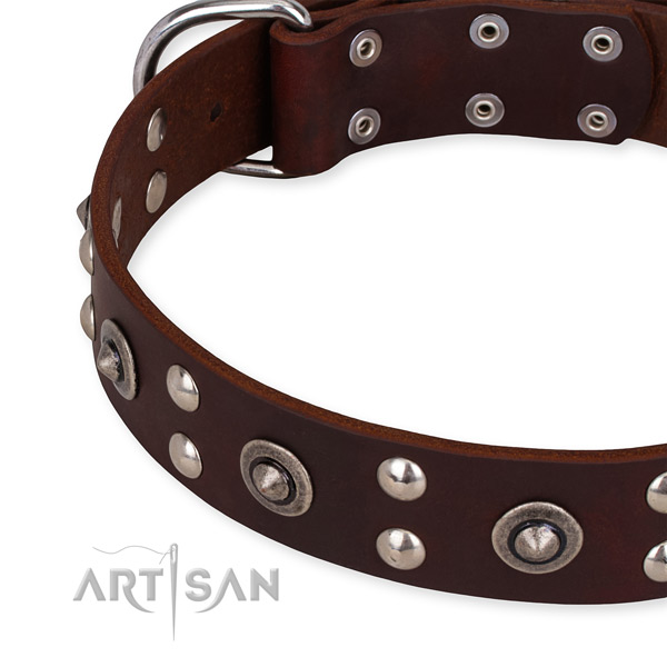 Full grain genuine leather collar with rust resistant hardware for your handsome pet