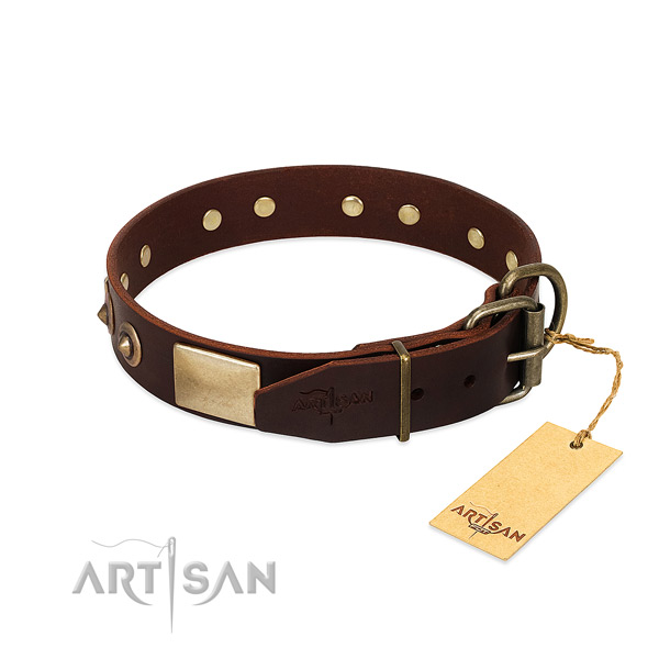 Reliable buckle on easy wearing dog collar