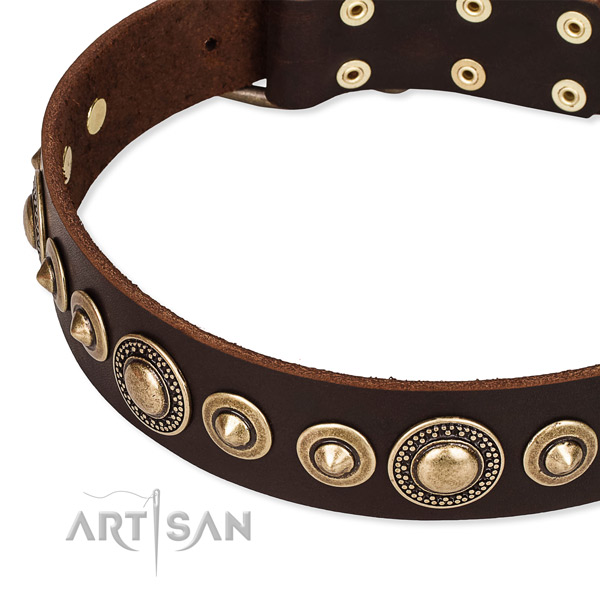 Durable genuine leather dog collar handcrafted for your beautiful canine