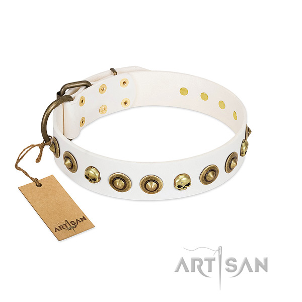 Natural leather collar with exquisite adornments for your four-legged friend