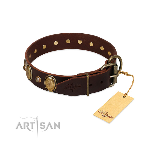 Corrosion resistant fittings on full grain natural leather collar for basic training your four-legged friend