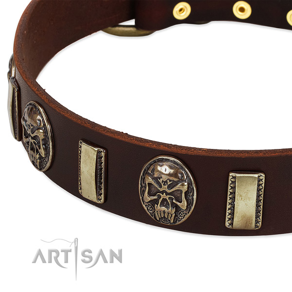 Rust-proof traditional buckle on full grain genuine leather dog collar for your canine