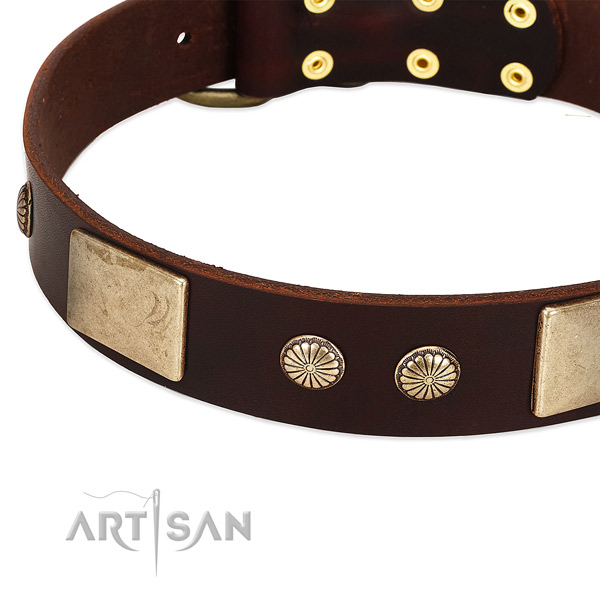 Durable buckle on leather dog collar for your doggie
