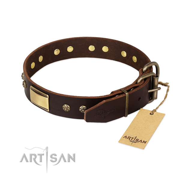 Unusual leather collar for your canine