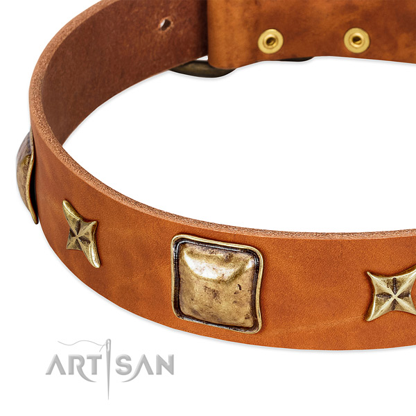 Rust resistant fittings on natural genuine leather dog collar for your pet