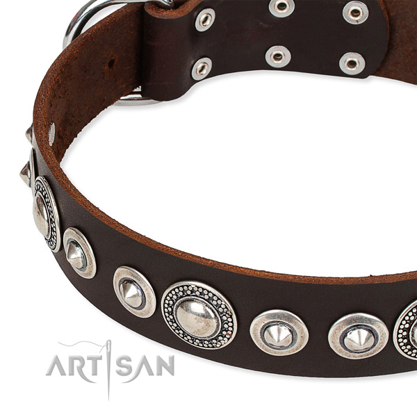 Comfortable wearing studded dog collar of reliable full grain genuine leather