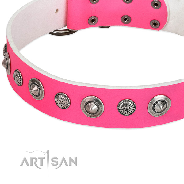 Full grain leather collar with strong traditional buckle for your impressive dog