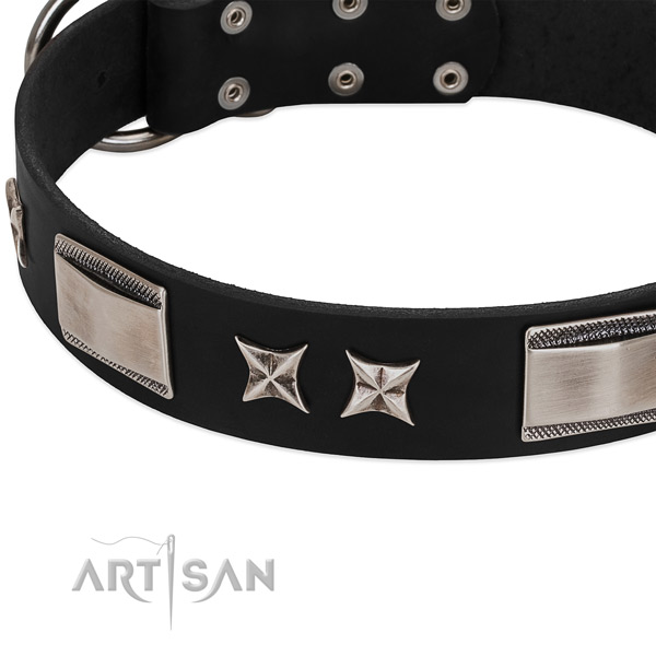 Quality genuine leather dog collar with rust resistant fittings