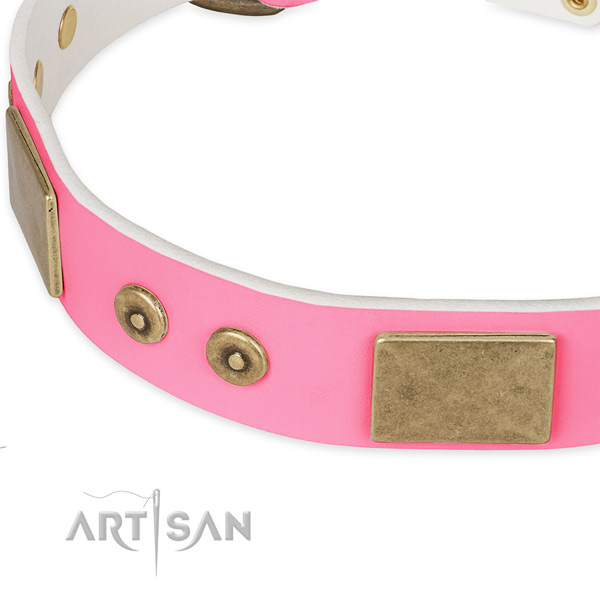 Full grain leather dog collar with adornments for daily walking