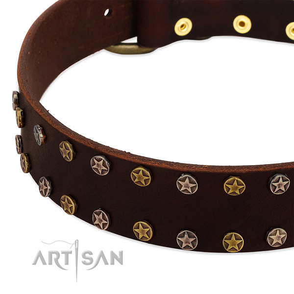 Easy wearing full grain genuine leather dog collar with designer studs