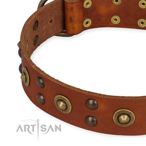 Full grain genuine leather collar with rust-proof hardware for your impressive canine