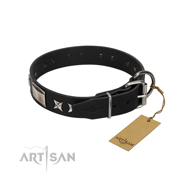 Quality genuine leather dog collar with reliable traditional buckle