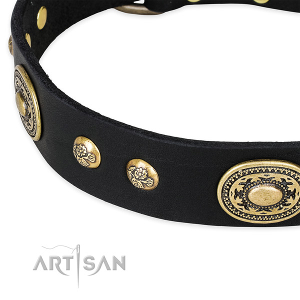Fashionable full grain genuine leather collar for your stylish doggie