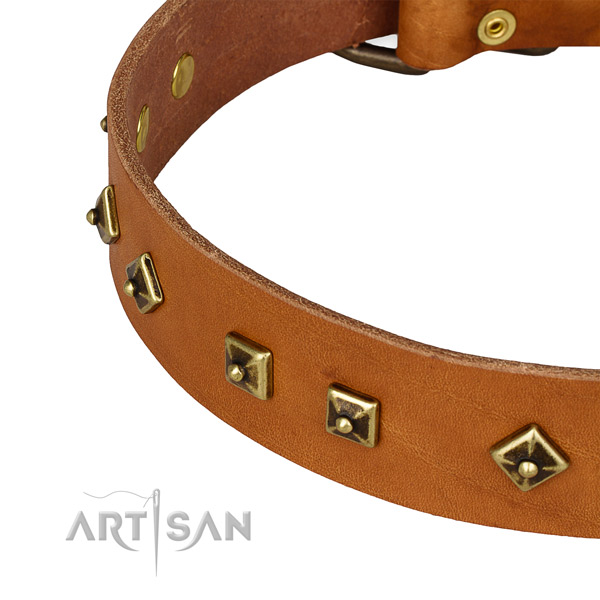 Easy to adjust full grain leather collar for your attractive canine