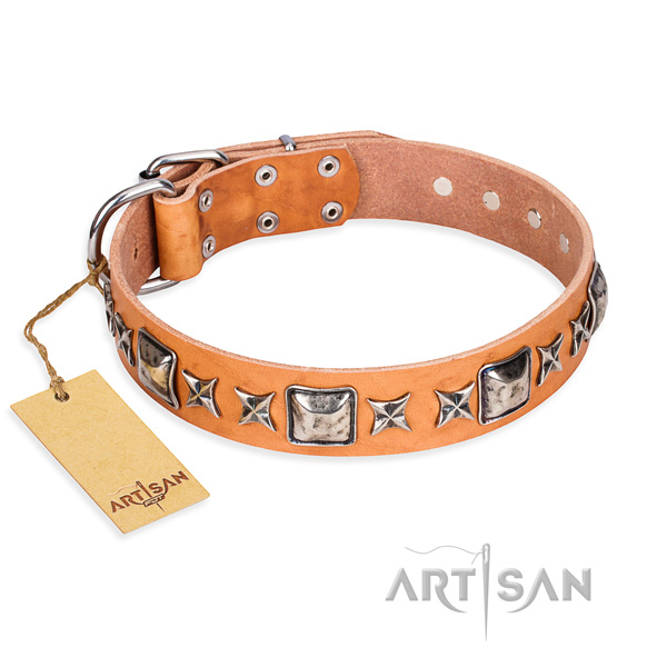 Stylish walking dog collar of best quality genuine leather with embellishments