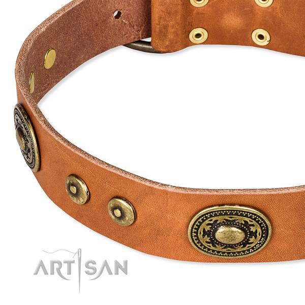 Full grain natural leather dog collar made of top rate material with adornments
