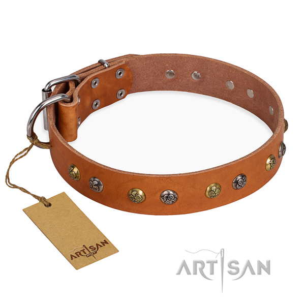 Stylish walking easy to adjust dog collar with strong D-ring