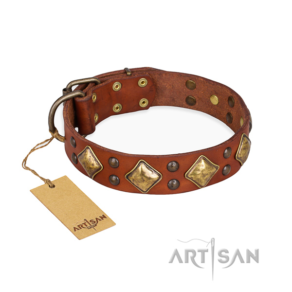 Handy use top notch dog collar with rust resistant traditional buckle