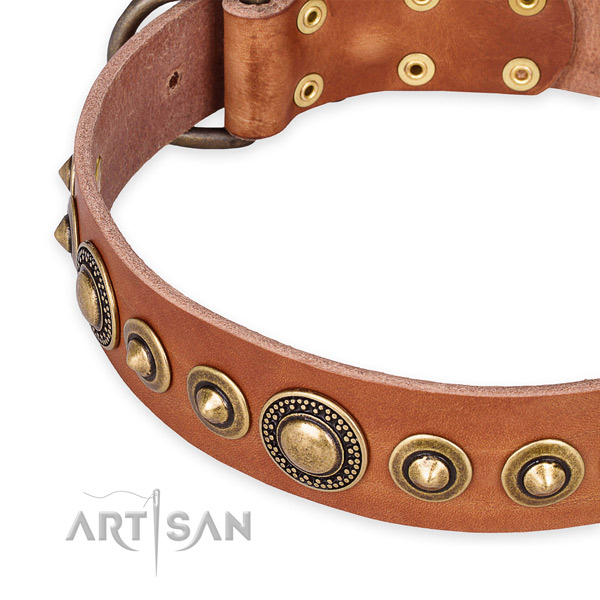 Best quality full grain leather dog collar made for your handsome pet