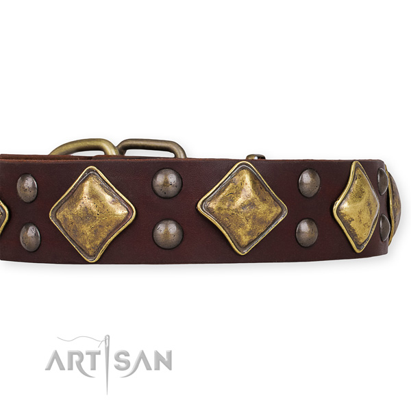 Genuine leather collar with strong buckle for your attractive four-legged friend