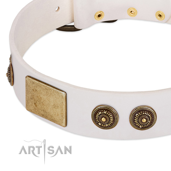 Amazing dog collar crafted for your impressive doggie