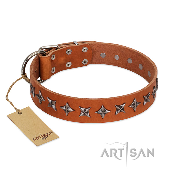 Comfy wearing dog collar of high quality leather with adornments