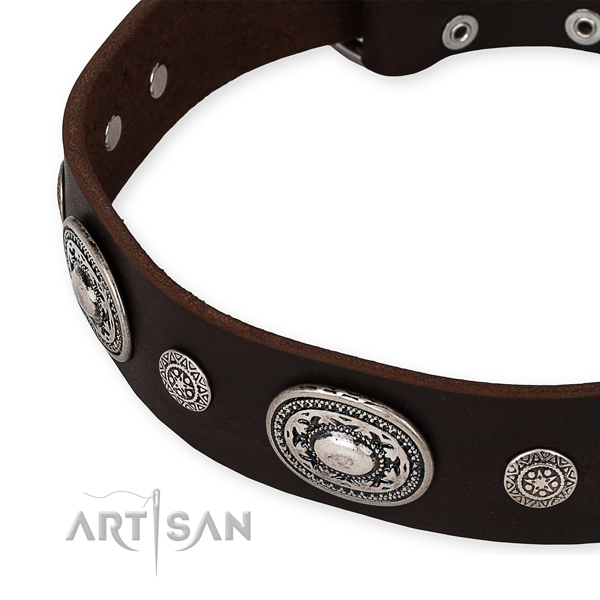 Strong genuine leather dog collar handcrafted for your lovely four-legged friend