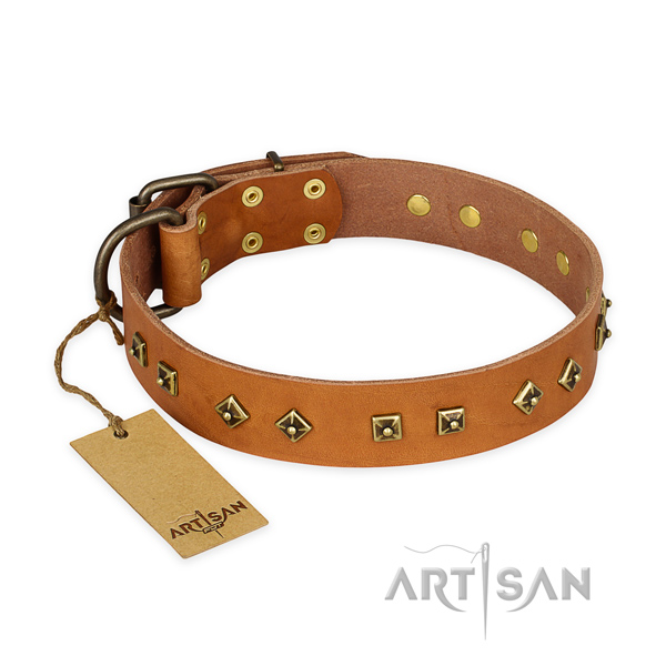 Easy adjustable leather dog collar with corrosion resistant fittings