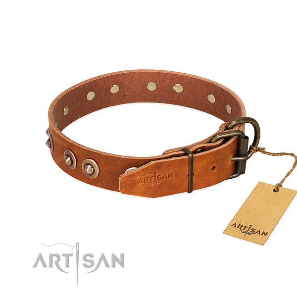 Corrosion proof D-ring on genuine leather dog collar for your canine