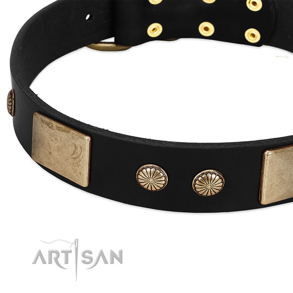 Leather dog collar with decorations for walking
