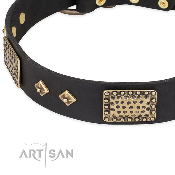 Corrosion resistant decorations on genuine leather dog collar for your four-legged friend