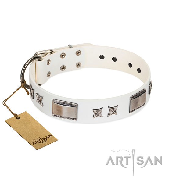 Decorated dog collar of natural leather