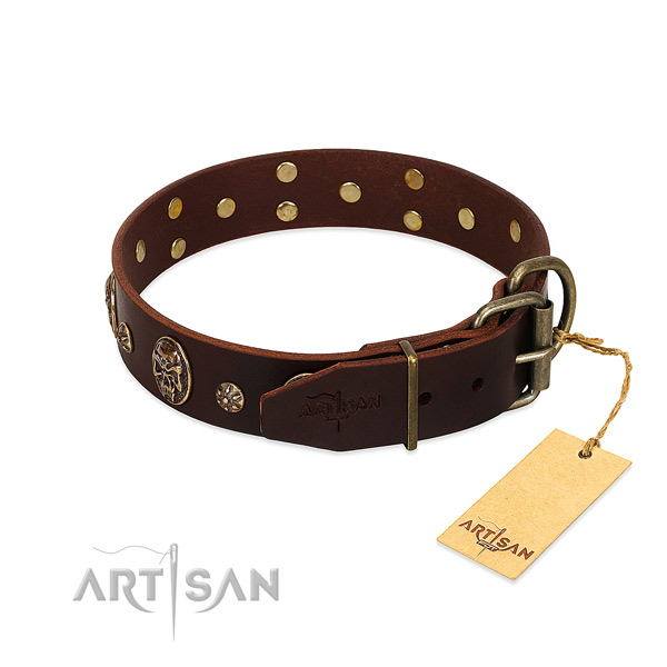 Durable adornments on full grain leather dog collar for your doggie