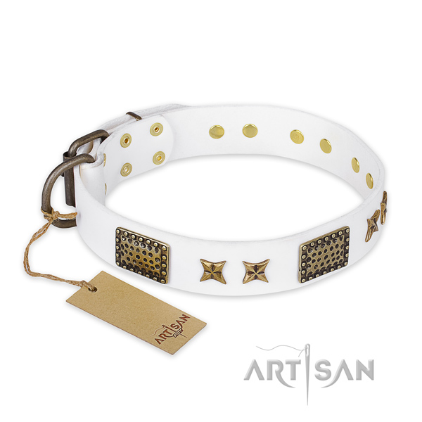 Studded full grain genuine leather dog collar with reliable D-ring