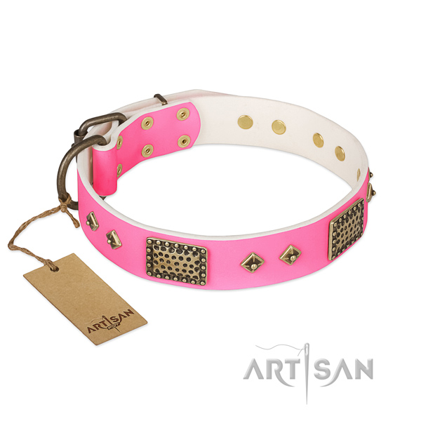 Easy adjustable full grain leather dog collar for stylish walking your doggie