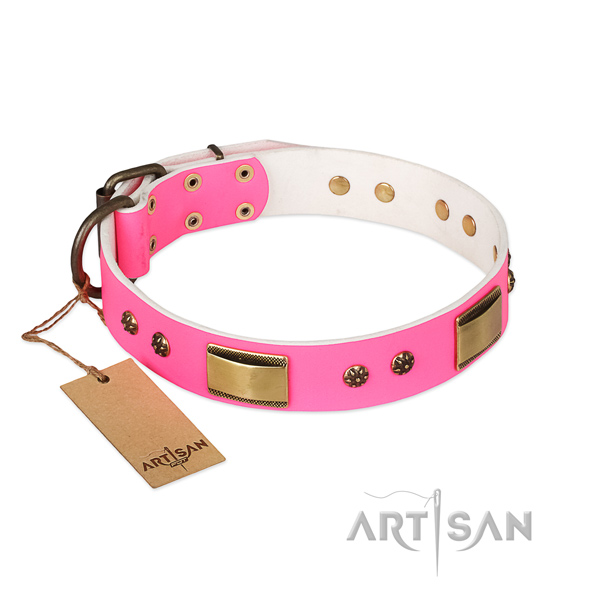 Significant full grain natural leather collar for your four-legged friend
