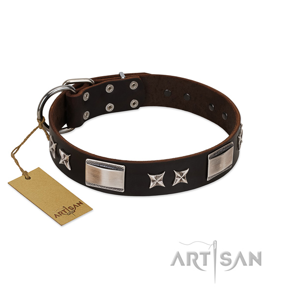 Stylish design dog collar of full grain natural leather